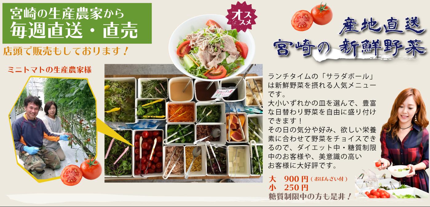 現地直送宮崎の新鮮野菜